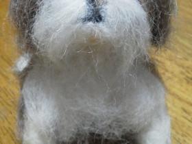 羊毛ドッグ シーズー