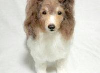 羊毛フェルト シェットランドシープドッグ
