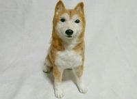 フェルトアート 柴犬
